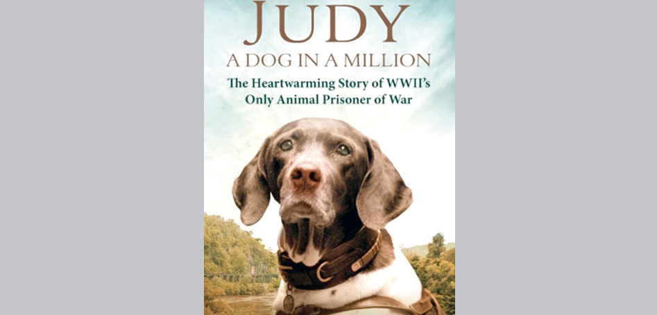 Livro: Judy – A dog in a million